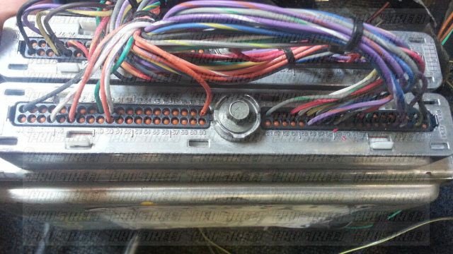 ls1 ecu pinout how to wire a ls1 in a s14 240sx my pro street ls1 painless wiring harness at aneh.co